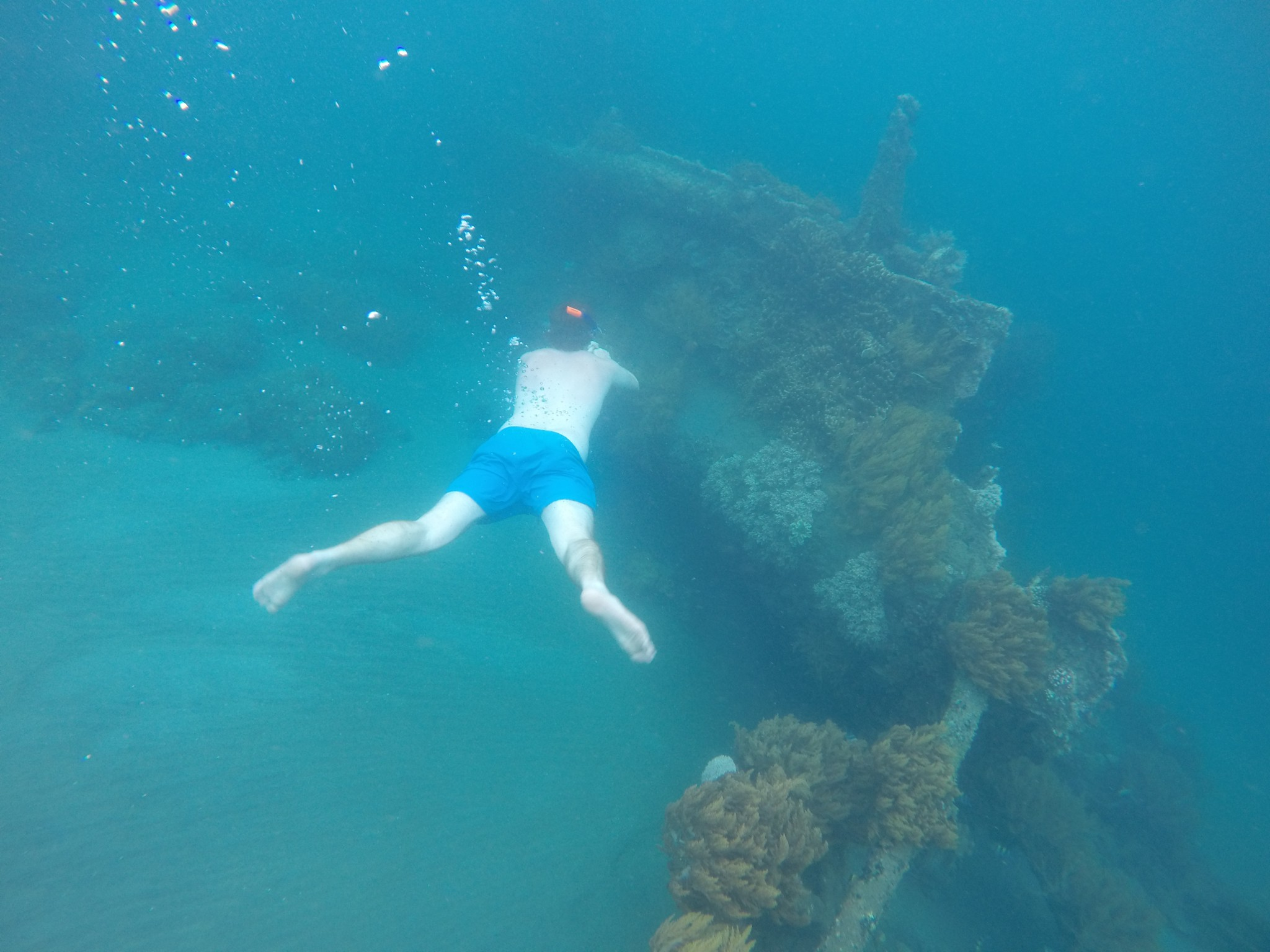Snorekelling The Japanese Shipwreck In Bali