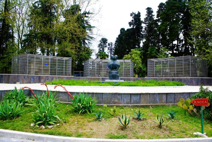 Abkhazia's Space Monkey Concentration Camp