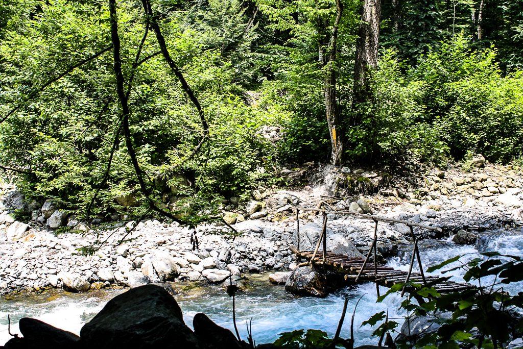 Travel to Lagodekhi National Park Georgia